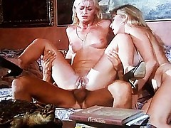 The Hit the road drive off Of Rocco Siffredi