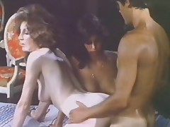 Hot Dallas Nights 1981 Lively Movie