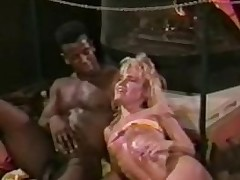 Fade Far Sulky 1988