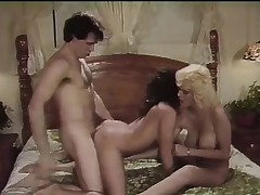 Smarmy sluts give their enjoyable pussies to a wonderful big-dicked lover